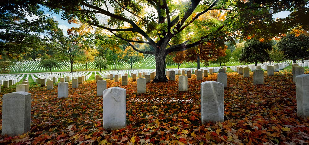 Arlington National Cemetery in the fall with leaves covering the ground.