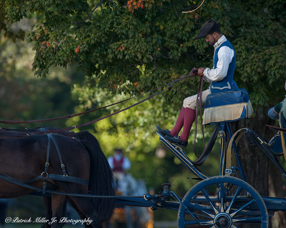 Horse drawn buggy and servant in Colonial Williamsburg