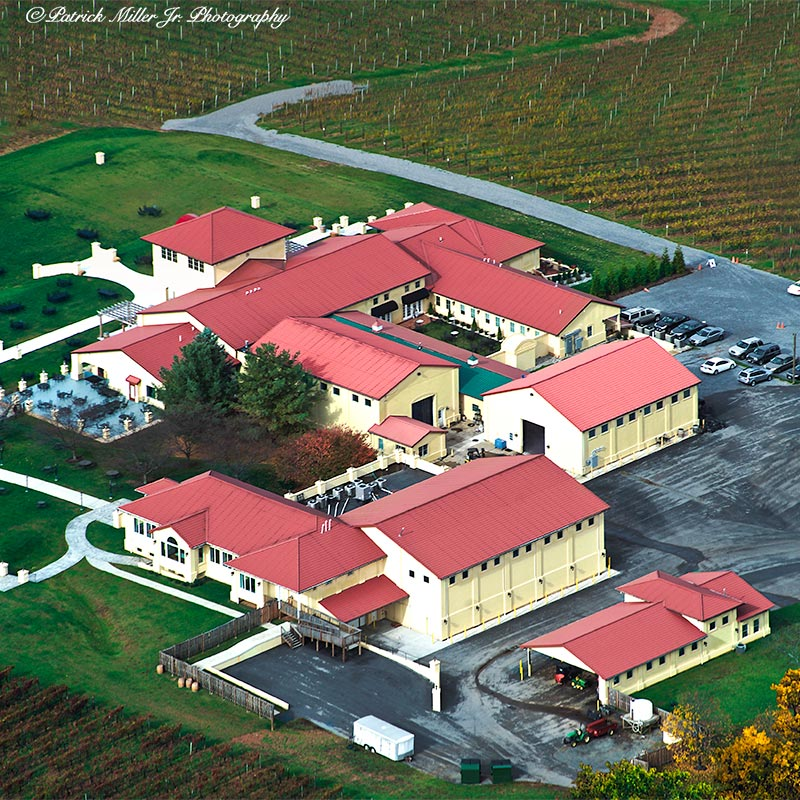 Ariel of Vineyard In Fall Virginia