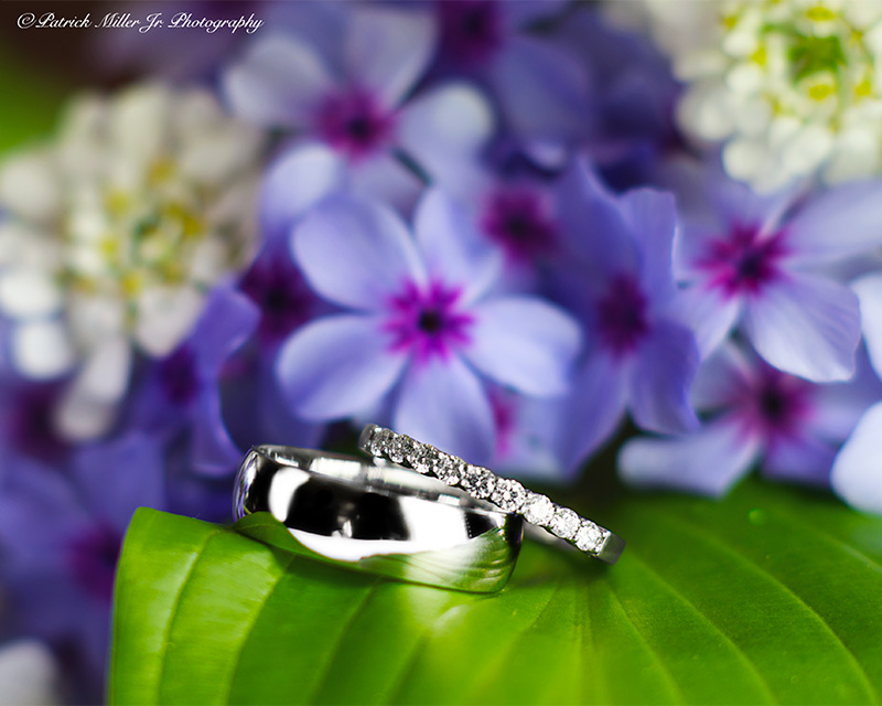 Product Photography Wedding Rings with Flowers, CO