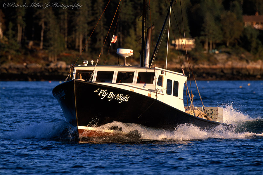 DND lobster boat, lobster boats, harbor, amy, winter, trees, colorful, graphic, boat at sunset, lobster boat sunset, maine, dusk, dawn, sunset, sunrise, me, north east, down east, lobstermen, lobsterman, coast, coastal, fisherman, lobster, lobsters, boat, boats, water, vinalhaven, lifestyle, ocean, water, island, islands, islander, islanders, way of life, ocean, north, vacation, atlantic, hard work, patrick, patrick miller jr, miller, patrick miller jr photography, patrickmillerjrphotography, photography, photographer, photo, picture, pictures, pic, pix, dc, d.c., washington d.c., washington dc, virginia, bethesda, md, va, maryland, nova, northern virginia, reston, herndon, fairfax, leesburg, sterling, burke, falls church, tyson corner, mclean, arlington, alexandria, springfield, image, advertising, professional, business, display, art, high res, purchase, prints, stock, amazing, stock photography, stock, travel, tourist, tourism, scenic, high resolution, color, colour, detailed
