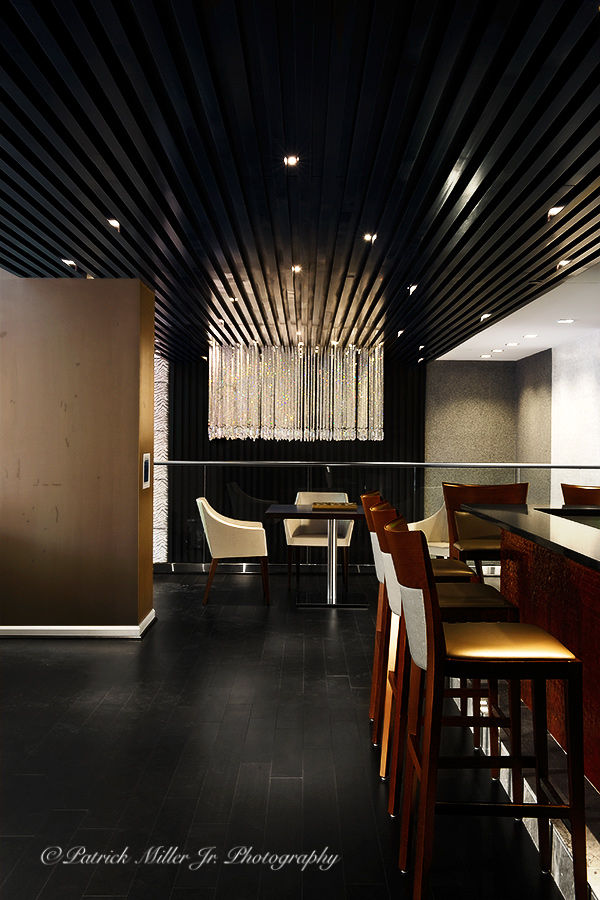 Commercial Interior Architecture Premier Lounge