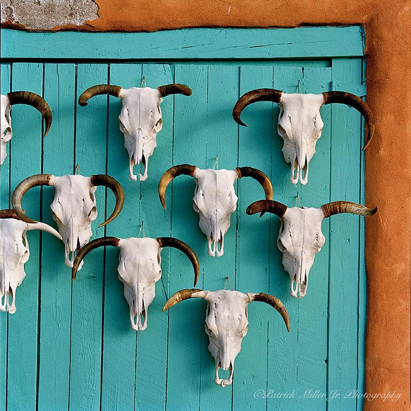 Colorful south west themed wall of cow skulls and stucco New Mexico