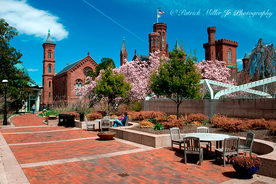 "Smithsonian Institution's Arts and Industries Building ""Castle"" Courtyard during the spring bloom Washington DC"