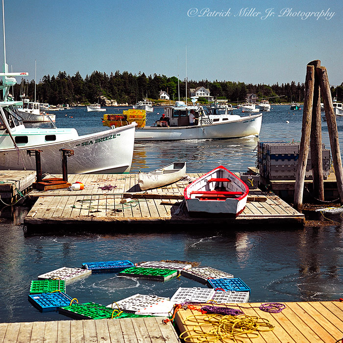 Busy working lobster harbor Vinalhaven Island Maine