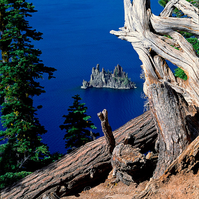 Vivid blue water of Crater Lake, deepest in the world, Utah
